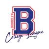 Kép 2/4 - Brooklyn College League |university stílusú fiú póló