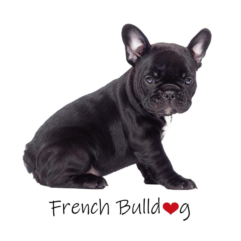 French bully   mintás vászontáska